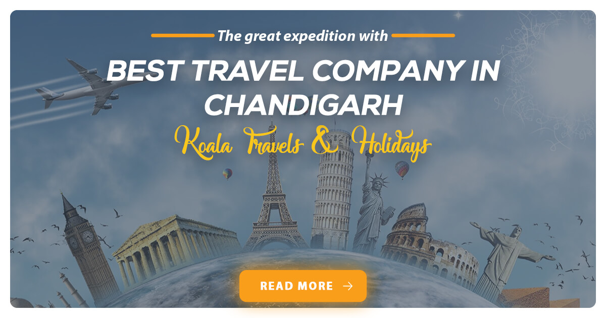best-travel-company-in-chandigarh